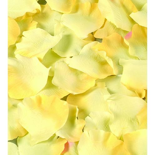 Karins laedsche bastelbedarf standard floristik for Bastelbedarf floristik